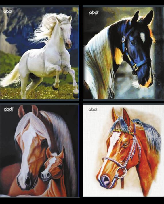 horse-portrait-48l